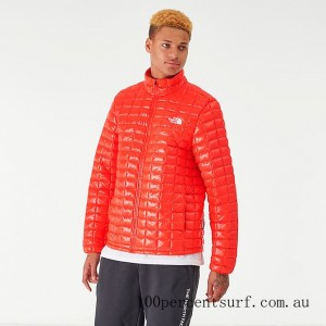 Men's The North Face Thermoball Eco Jacket Red On Sale